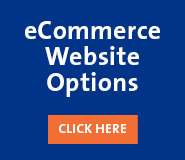 eCommerce Website Options